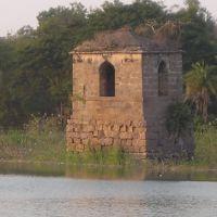 Qilla Pond, Низамабад