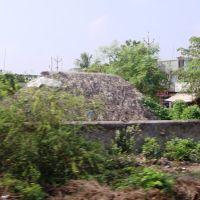 తెనాలి  தெனாலி तॆनाली Tenali  8323., Тенали