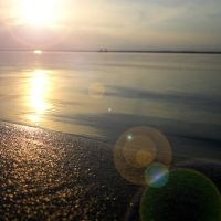 Golden Rays, Дибругарх