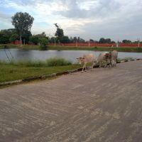 beauty @ darbhanga raj, Дарбханга