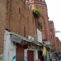 Darbhanga Maharaj Fort Wall, Дарбханга