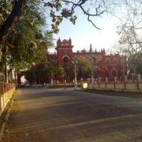 Road to LAkshmivilas Palace, Дарбханга