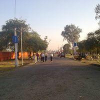 Darbhanga Raj campus, Дарбханга