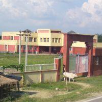 NATIOANAL MAKHANA RESEARCH CENTRE, Дарбханга