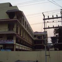 Madonna English School, Дарбханга