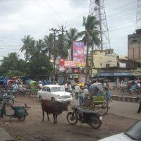 katihar Rsjenrs presd Road, Катихар