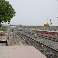 DPAK MALHOTRA, Surendernagar Junction Railway Stn, Platform, Surendernagar, गुजरात भारत Gujarat Bharat ગુજરાત ભારત દેશનું, Йодхпур