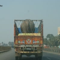 Elephant in the Truck, Навсари