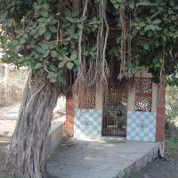 Mahadev Mandir, Навсари