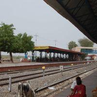 DPAK MALHOTRA, Surendernagar Railway Stn, Surendernagar, गुजरात भारत Gujarat Bharat ગુજરાત ભારત દેશનું, Сурендранагар