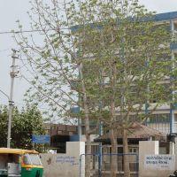 DPAK MALHOTRA, Meditation Traing Centre, Surendernagar, गुजरात भारत Gujarat Bharat ગુજરાત ભારત દેશનું, Сурендранагар