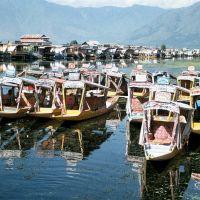 Shikary - pocztówka ze Srinagaru, Сринагар