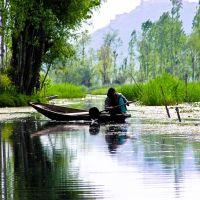 Kashmir boat woman, Сринагар