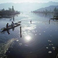 Lake Dal, Сринагар