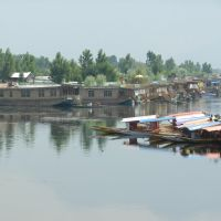 Great view of Dal Lake from Dal Gate: Srinagar, Kashmir Valley, Jammu & Kashmir, Сринагар