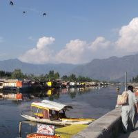 Dal Lake Srinagar, Сринагар