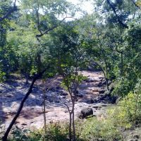 Dry Stream, Барейлли
