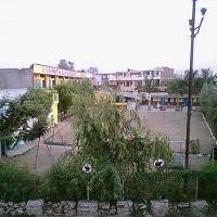 g.b.pant school, ashoka garden, Бхопал