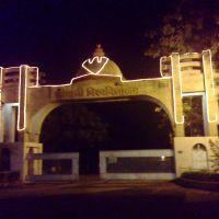 jiwaji university gate, Гвалиор