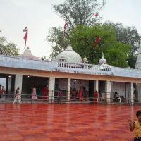 Badi Devi Ji  Mandir (Bhuan), Дамох
