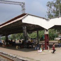 DSC08017 लक्ष्मीबाई  नगर லட்சுமிபாய் நகர் 18 11.58.25, Кхандва