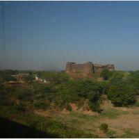 Via Férrea - Agra/Jhansi (devpuri) - India .τ®√ℓΞΛج, Мау
