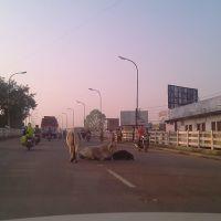 Sailana road bridge ratlam, Ратлам