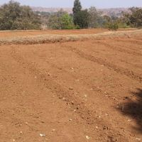 Farm Bunds for Soil and Water Conservation, Акола