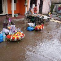 India - Nashik, Кхамгаон