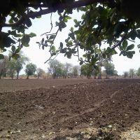 A farm in Hingna Balapur (New), Малегаон
