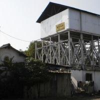 PC310441नन्दुबार નન્દુબારநந்துபார், Нандурбар
