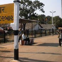 PC310442नन्दुबार નન્દુબારநந்துபார் Nandubar 11.47.22, Нандурбар