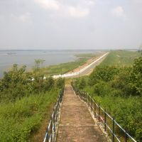 Beauty at Gosekhurd Dam., Тана