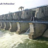 Gosekhurd Dam, Тана