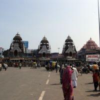 The temple cars, Puri, Пури