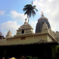 Sri Jagan nath Temple , Puri Odisha, Пури