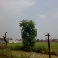 A VIEW OF NEAR BATALA  2011  ਬਟਾਲਾ BY-GURMEJ SINGH VIRK 9465177443, Батала