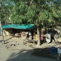 Agra - uptown, Альвар