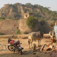 Lohagarh Fort, Бхаратпур