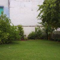 garden, Бхилвара