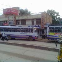 Sikar Bus, Сикар