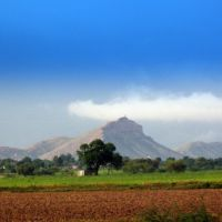 Landscape : Tonk, Тонк