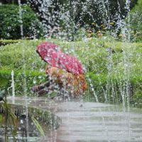 cleaning the fountain at Saheliyon ki bari, garden, Удаипур