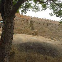 dindigul fort, Диндигул
