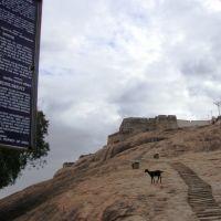 DSC04220 பத்மகிரி-பாதுகாக்கப்பட்ட சின்னம்  PadmaGiri - Paadhukaakkappatta Chinnam   16.00.33, Диндигул