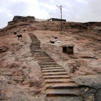 DSC04221 பத்மகிரி கோட்டை படிகள் Padma Giri kohttai padigal view from Dhindukkal PadmagiriKottai01, Диндигул
