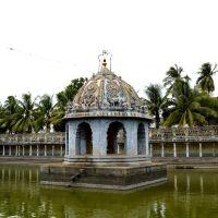 Temple Pond, Кумбаконам