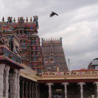 Madurai, Sri Meenakshi temple - Inde / ROBIN82 FRANCE, Мадурай