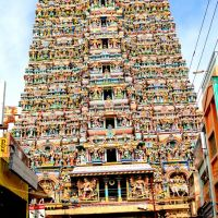 Western Entrace of Minakshi Temple, Madurai, Мадурай