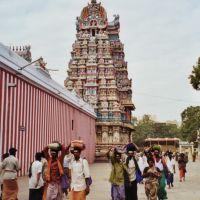 pilgrims, Мадурай